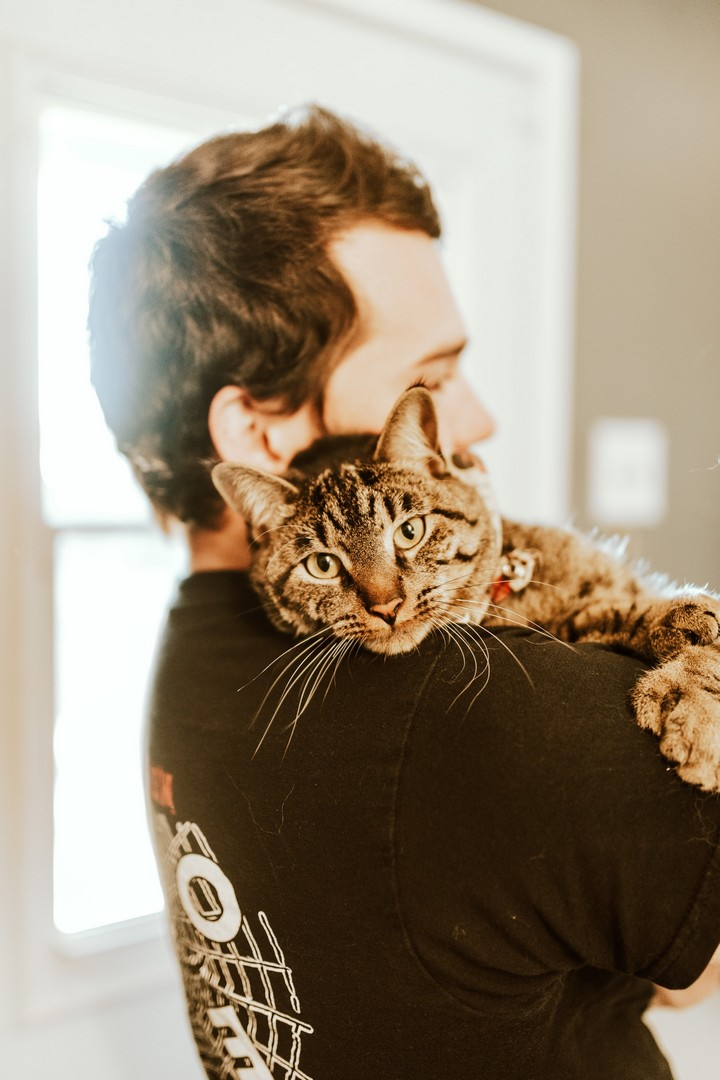 How and Why Do Cats Cuddle