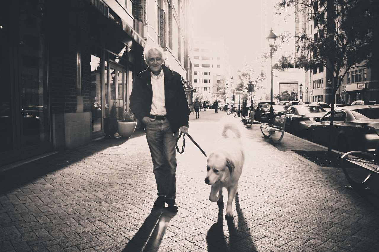 dog ownership helps lower rates of loneliness
